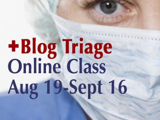 Blogtriage_407w